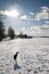 Esikatselukuva albumille: Jäällä 12032010